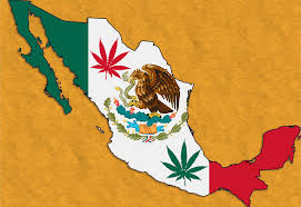 Weed Flag Mexico Legalizes Medical Cannabis