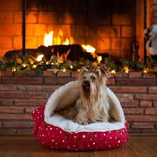snoozers holiday cozy cave pet bed