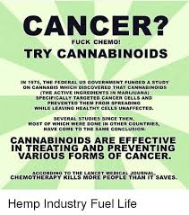Chemo Meme - cancer fuck chemo try cannabinoids in 1975 the federal us