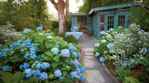 17 dreamy hydrangea gardens that are giving us major inspiration