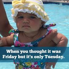 Fun Friday Meme - 16 funny baby memes to brighten your day babycenter blog