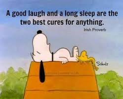 Sleep Meme - the best sleep memes of the internet 2017 get best mattress