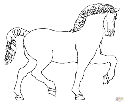 przewalski u0027s wild horse coloring page free printable coloring pages