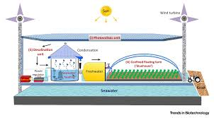 toward future photovoltaic based agriculture in sea trends in