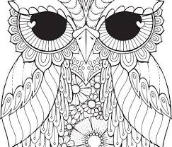 Owl Coloring Pages 25 Unique Owl Coloring Pages Ideas On Pinterest Coloring Pages Owl