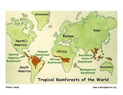 south america map rainforest rainforest lessons tes teach