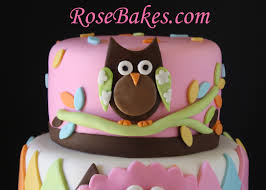 baby shower owl decorations whoo you baby shower owl cake bakes