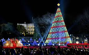 best christmas lights in the world christmas 2014 enjoy some of the season u0027s most beautiful holiday
