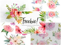 free flowers a collection of 240 free watercolor floral elements