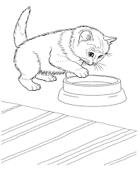 milk coloring pages little cute kitten coloring pages womanmate com