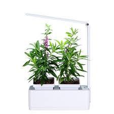 diy self watering herb garden green earth el 30 smart hydroponics indoor herb garden kit mini