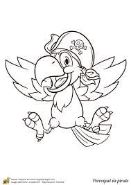 dessin à colorier d u0027un joyeux perroquet pirate coloriages de