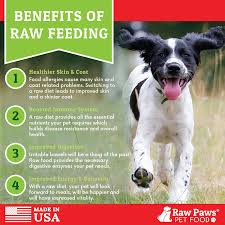 raw paws pet premium raw freeze dried dog food u0026 cat food 16