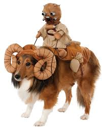 human dog costumes for halloween funny star wars bantha dog costume star wars costumes cute dog