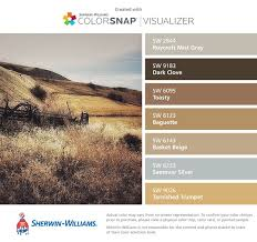 33 best color schemes u0026 palettes images on pinterest color
