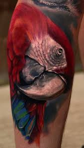 42 parrot tattoos with exotic and symbolic meanings tattoos win