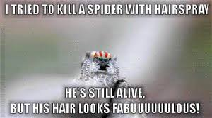 Exterminator Meme - pest humor hairspray does not kills spiders but we know a great