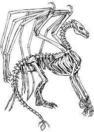 dragon skeleton coloring pages coloringstar