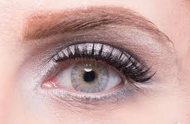 light grey contact lenses price review and buy elegance diamod cosmetic six month disposable