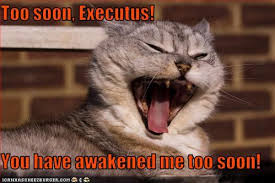 Too Soon Meme - too soon executus you have awakened me too soon cheezburger