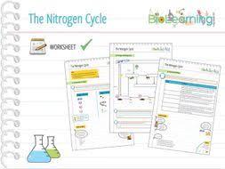 nitrogen cycle worksheet ks4 by anjacschmidt teaching