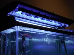 Diy Led Light Strip by Budget Diy Led Stunner Strips Moonlight Reef2reef Saltwater