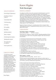 Summary Examples For Resume by Web Developer Resume Example Cv Designer Template Development