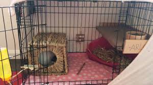 Large Bunny Cage How To Turn Your Dog Cage Into A Rabbit Cage Youtube
