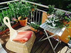topfpflanzen balkon begrünter balkon mit topfpflanzen und blumen gartenmoebel