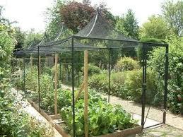 great shade cloth over vegetable garden vegetable garden 2 bird