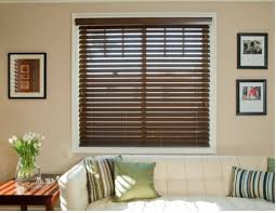 Roller Blinds Online Shades Ideas Inspiring Sheer Roller Shades Vinyl Pull Down Window