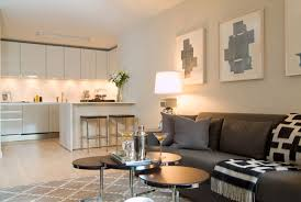 Chic Design What Color Rug Goes With A Grey Couch Contemporary