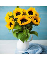 sunflower delivery mini bouquet of sunflowers buy price 224000tg delivery and