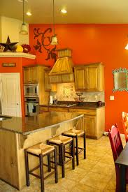 Interior Kitchen Colors 18 Best Orange Kitchen Images On Pinterest Orange Kitchen