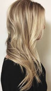 lowlights in bleach blonde hair high lift lighteners vs bleach which is best for you evolve