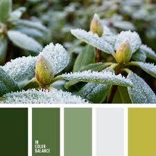 138 best winter colors images on pinterest colors color