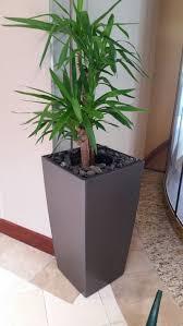 business botanicals