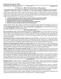 Cio Sample Resume Healthcare Executive Resume Examples Resume For Your Job Application