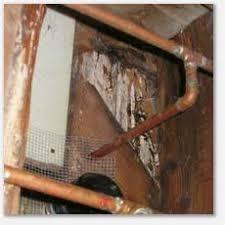 Rotten Bathroom Floor - crawlspace inspections rotted subfloor leaks under bathroom