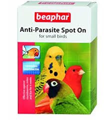 pharmaq ivermectin mite drops small ornamental birds co