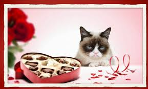 grumpy cat valentines grumpy cat does s day a bit