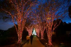 best christmas lights in georgia atlanta nov 17th at the atlanta botanical garden event sold out