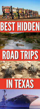 the best family road trips in simply shellie