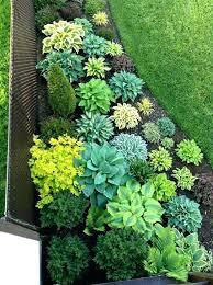 Shady Garden Ideas Shade Landscaping Ideas Circular Landscaping Ideas Design Ideas