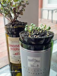 one thing three ways wine bottle herb planter shutterbugsage com