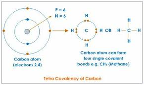 what is the bohr model for carbon socratic