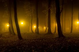 tour this surrey forest on the bear creek haunted forest scream train