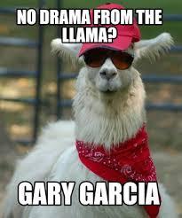 meme creator no drama from the llama gary garcia meme generator