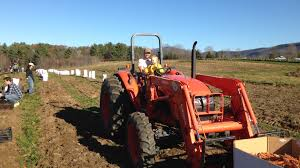 our blog at salvation farm reducing vermont u0027s dependency on food