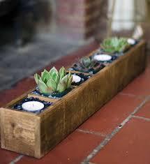Rectangular Succulent Planter by Best 10 Succulent Planters Ideas On Pinterest Succulent Wall